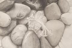 Pebbles-and-Petals